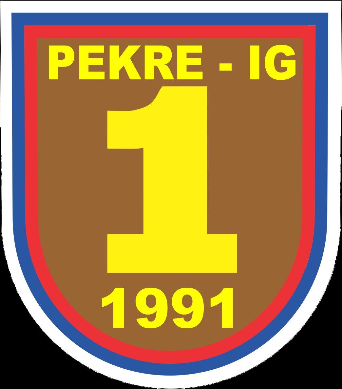 Dan Slovenske vojske